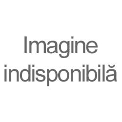 Fox/Paolo Riggi/Poldo